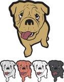 Бульдог английского языка логотипа талисмана щенка стоковые изображения
