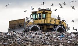 Бульдозер места захоронения отходов глумить птицами стоковая фотография
