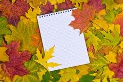 Бумага в предпосылке осени стоковое фото