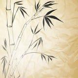 Бумага запятнанная Grunge Bamboo Стоковая Фотография
