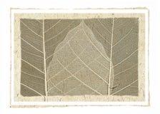 бумага искусства стоковые изображения