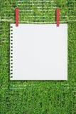 Бумага и зажим на стене листьев зеленого цвета Стоковые Изображения RF