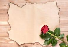 Бумага и singl сгорели предпосылкой, который подняли стоковая фотография