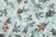 Бумага картины серебряной ели Стоковые Изображения RF