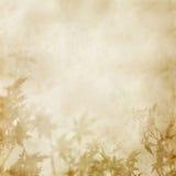 бумага листьев Стоковая Фотография RF