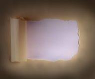 Бумага пакета Брайна Стоковое Фото
