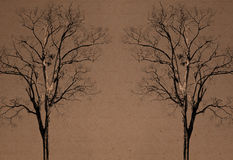 бумага предпосылки двойная рециркулирует вал Стоковое Фото
