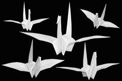 бумага птицы Стоковое Фото