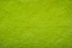 бумага скомканная предпосылкой текст места зеленой бумаги предпосылки ваш скомканная бумажная текстура Стоковое Изображение