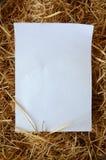 бумага сухой травы Стоковое Фото