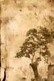 бумага цветка старая Стоковое Изображение