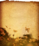 бумага цветка Стоковые Изображения