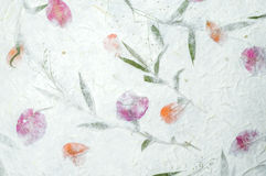 Бумага шелковицы с текстурой цветков Стоковое Изображение