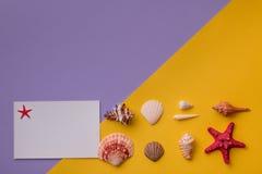Бумажная карточка и морские звезды Стоковое фото RF