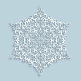 Бумажная снежинка шнурка Стоковые Изображения RF