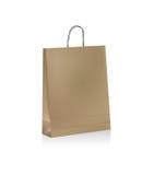 Бумажная сумка Стоковые Фотографии RF