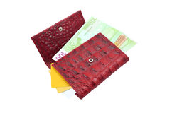 бумажник дег кредита карточек Стоковые Изображения