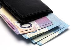 бумажник дег Стоковое Изображение RF