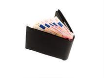 бумажник евро Стоковая Фотография