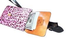 бумажник наличных дег Стоковое фото RF