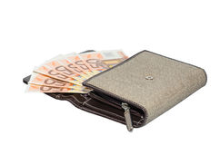 Бумажник портмона изолированных женщин ткани с 50 кредитками евро Стоковое Изображение RF