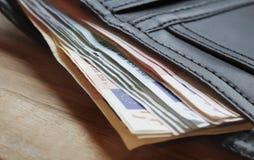 бумажник примечаний евро выступая Стоковое Изображение RF