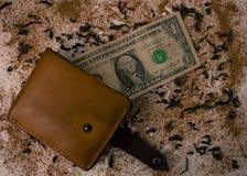 Бумажник с долларом на предпосылке Стоковые Фото