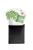 Бумажник с кредитками евро Стоковое фото RF