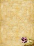 бумажное сочинительство сбора винограда Стоковое фото RF