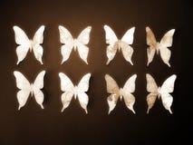 Бумажные бабочки Бумажное вырезывание Стоковые Фото