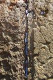 Бумажные примечания вставленные в голося стене в старом городе Иерусалиме стоковое фото rf