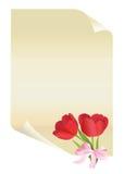 бумажные тюльпаны Стоковая Фотография RF