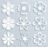 Бумажные цветки. Комплект бумажных орнаментов Стоковое Фото