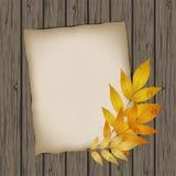 Бумажный лист с листьями осени Стоковое Изображение RF