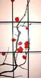 бумажный экран риса Стоковые Фото