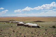 Бунгала ложи в пустыне благоустраивают около пасьянса, Намибии Стоковая Фотография