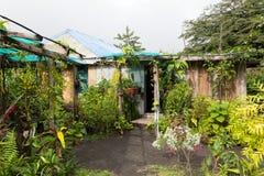 Бунгало джунглей Стоковая Фотография RF