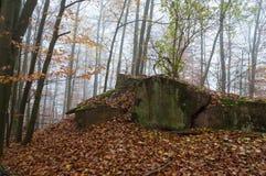Бункер WW2 в Германии Стоковое Фото