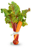 Бураки и морковь с метром Стоковые Изображения RF