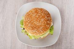 Бургер в плите на поле Стоковое Изображение