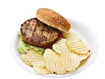 бургер откалывает vegetarian Стоковое фото RF