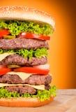 Бургер половинный Стоковое Изображение RF