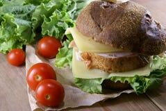 Бургер с мясом, сыром и свежими овощами Стоковая Фотография RF