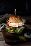 бургер с домодельными мясом и сыром Стоковые Фото