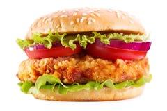 Бургер цыпленка изолированный на белой предпосылке стоковое изображение rf