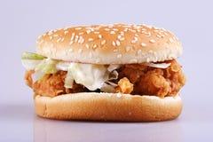 бургер Стоковые Изображения RF
