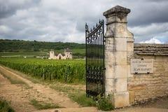 Бургундский, Clos de Vougeot Франция Представьте на зоне около 50 гектаров, Clos de Vougeot грандиозное название Cru Стоковое Фото