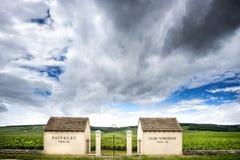 БУРГУНДСКОЕ â€ «ФРАНЦИЯ: виноградник Domaine Faiveley Стоковые Фотографии RF