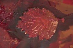 Бургундский, лист осени Стоковые Фотографии RF