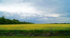 Бурное облачное небо Стоковое Фото